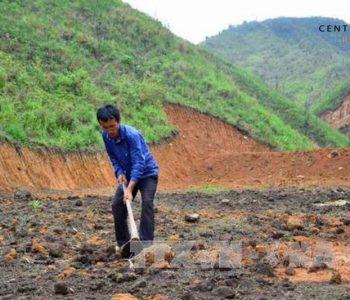 Đất khai hoang là đất đai không có ai sử dụng bị để hoang hóa