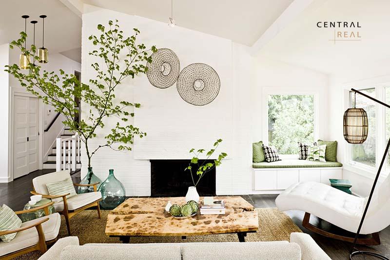 Trang trí cây xanh cho phòng khách với những loại cây mảnh mai cùng chậu kiểu dáng lạ vô cùng ấn tượng