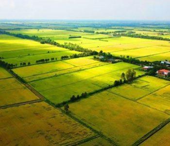 Đất nông nghiệp và giá đền bù đất nông nghiệp mới nhất