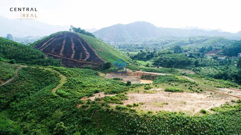 Đất rừng sản xuất có được xây dựng nhà không?