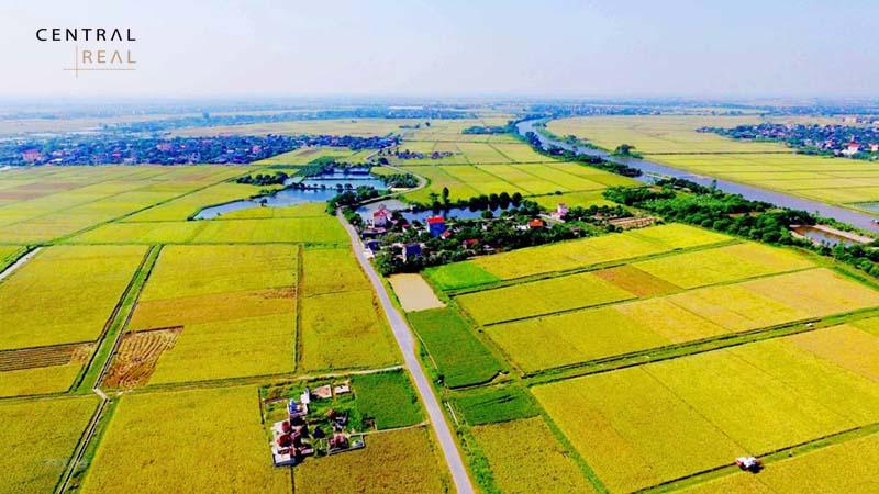 Đất dùng cho hoạt động để kinh doanh và khai thác khoáng sản.