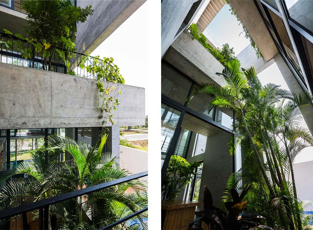 Các không gian chính được thiết kế cách khoảnh vườn và cây xanh được bố trí, sắp xếp hợp lý
